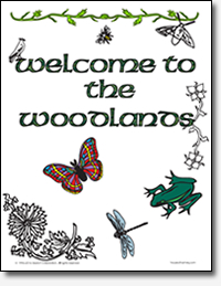 Woodlands Coloring Book